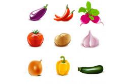 Учим овощи (1+)