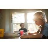 Семейная форма образования: как решиться?